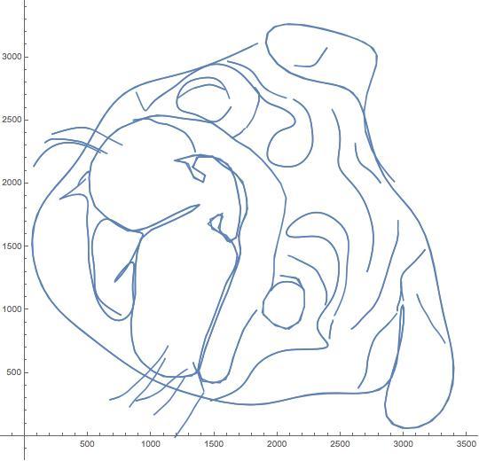 delta-curve
