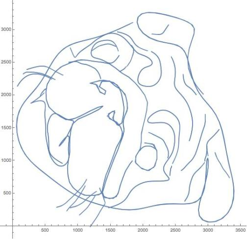 Making face-curves in Mathematica – Possibly♢Necessary